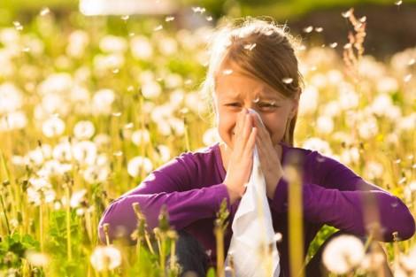 Veja como amenizar os sintomas da rinite alérgica